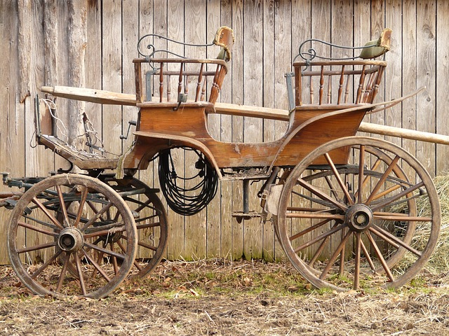 Coach, Horse Drawn Carriage, Wagon - Free image - 49646